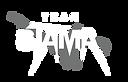 Team STAMA logo