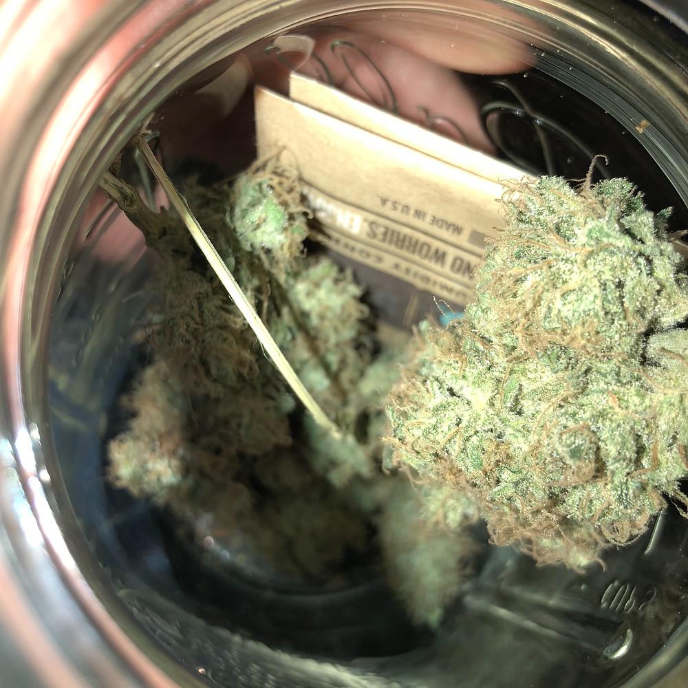 marijuannacurringwithbovedapacks