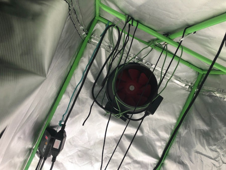 Tips on grow tent ventilation