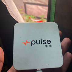 Pulse-grow-room-moniter.jpeg