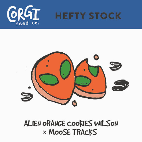 Alien Orange Cookies wilson X Moose Tracks