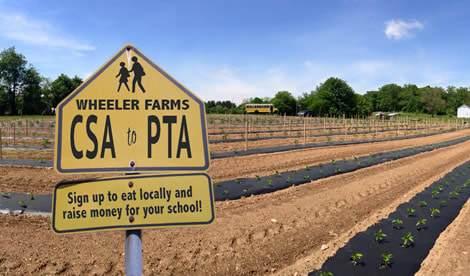WHEELER FARMS