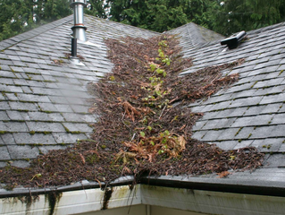 Winter is Coming.. Is Your Roof Ready?