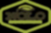 Nolo Logo Color.png