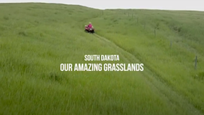 """""""Our Amazing Grasslands"""" video series"""