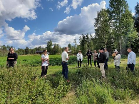 Ärmätin nokkostuotanto kiinnosti luonnontuoteyrittäjiä Keski-Karjalasta