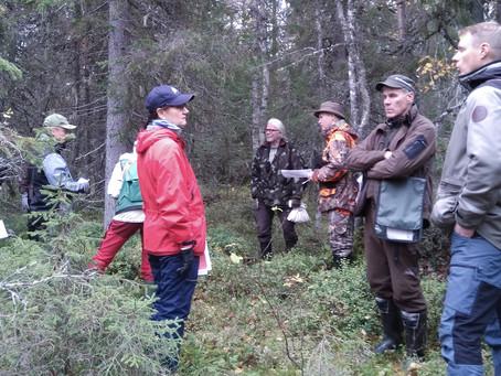 Liito-oravan suojelun ja metsänkäytön välille löytyi Kurikkavaarassa sopuratkaisu