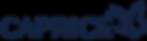 логотип каприз.png