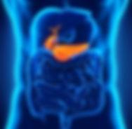 МРТ внетренних органов