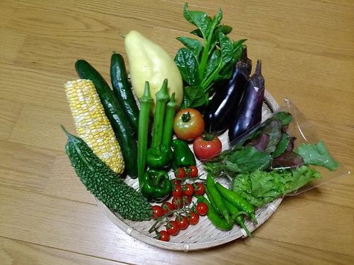 野菜セット(定期便)※送料別
