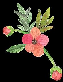 flores-11.png