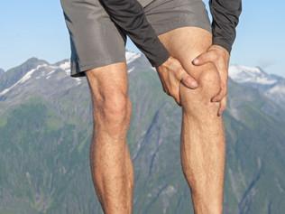 La tendinopathie patellaire - Pistes de rééducation