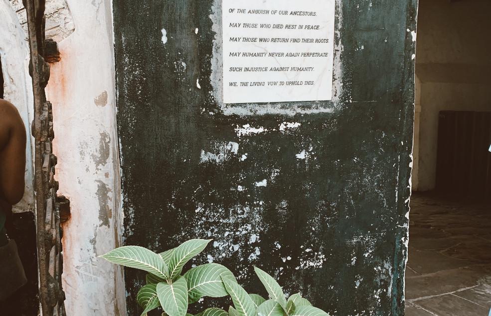 Elmina3