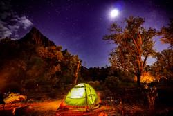 Campsite  Nights