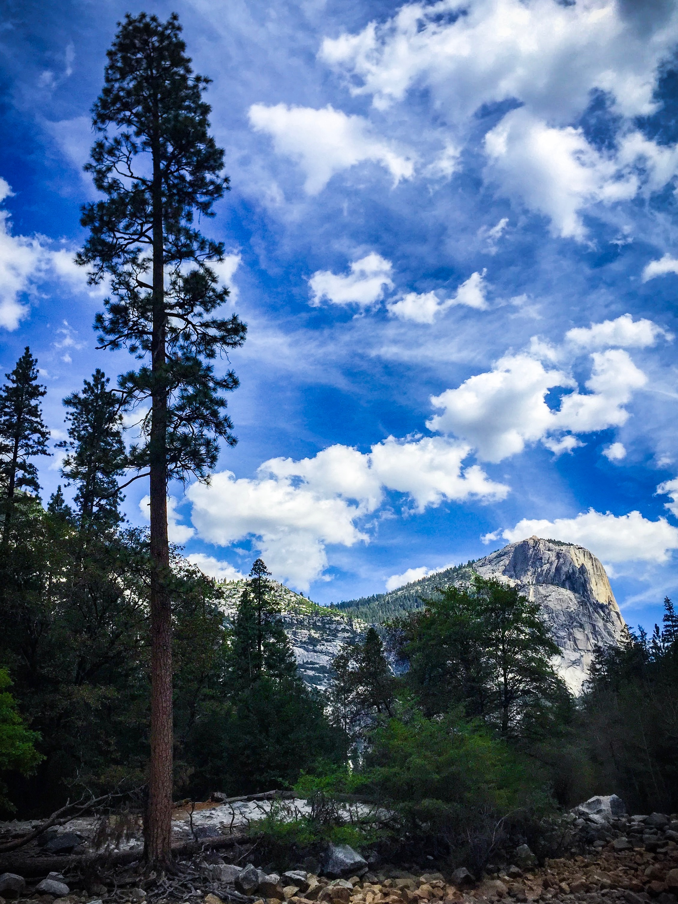 Yosemite Captured