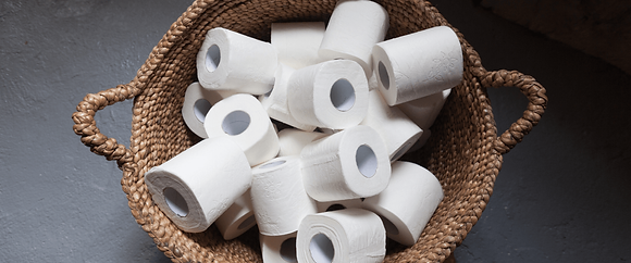 Ecoleaf Toilet Roll sold individually