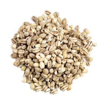 Pearl Barley 100g