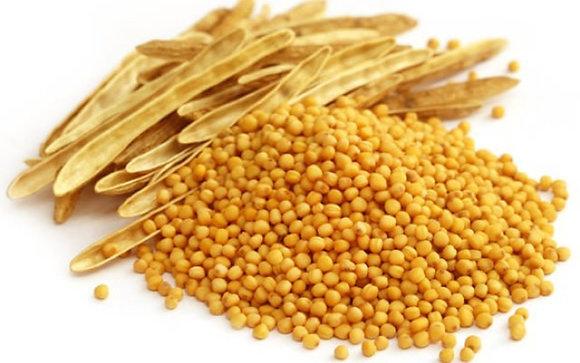 Mustard Seeds Yellow 10g