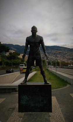 Madera 2015