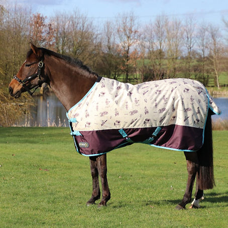 StormX-Original-100-Turnout-Rug-Thelwell-Collection-Country-01.jpg