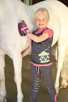 Little Rider Equestrian Collection for Horse & Rider