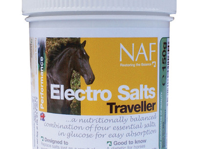 5 ways to keep your horse hydrated this summer.