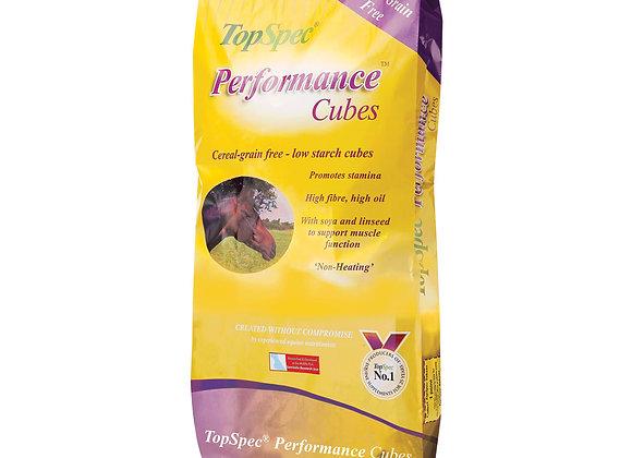 Topspec Performance Cubes 20kg