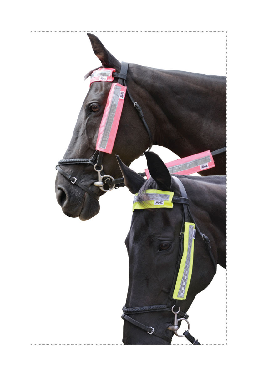 HyViz Bridle Set in Pink and Yellow