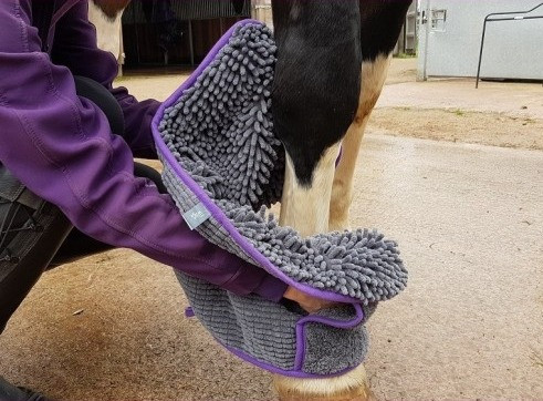 Microfibre Equine Noodle Glove Towel from Henry Wag