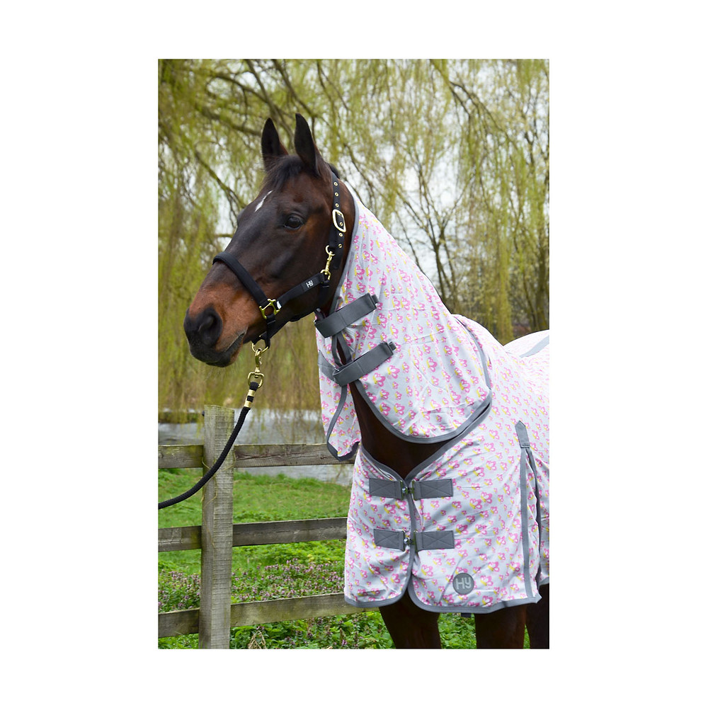 Hy Fly Rug Butterfly Print