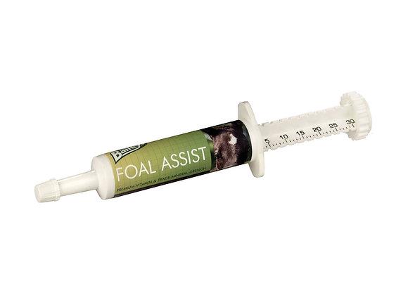 Baileys Foal Assist Syringe