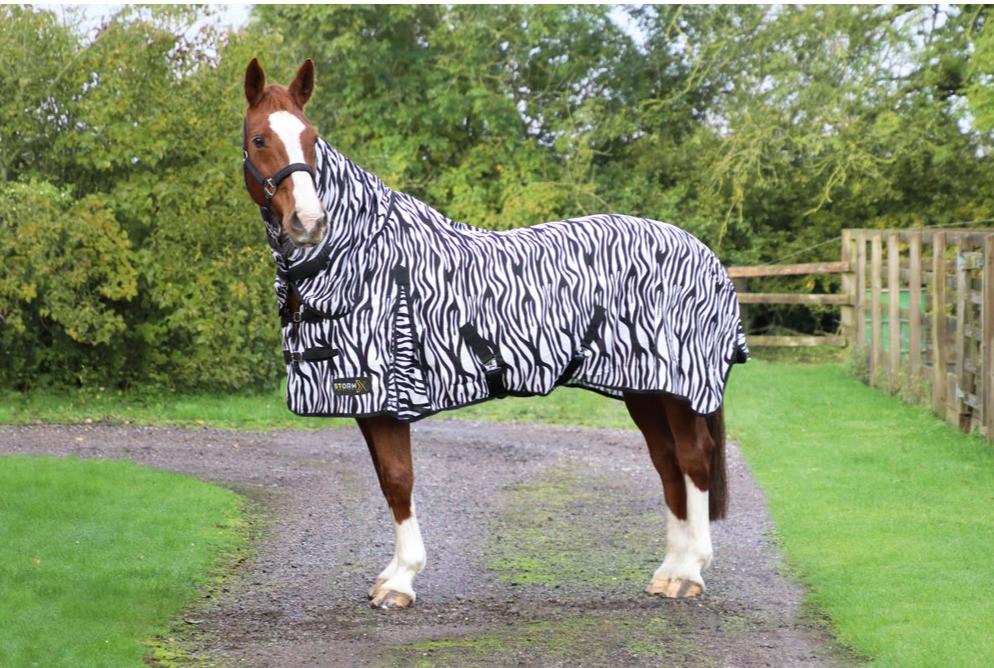 Hy Zebra Print Fly Rug for Horses