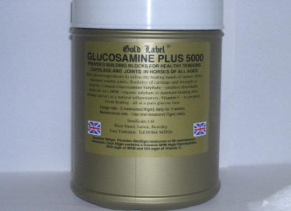 Glucosamine Plus 5000 900gm/2.7Kg (Gold Label)