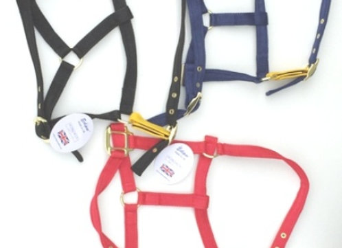 Eclipse Headcollar Padded with Release