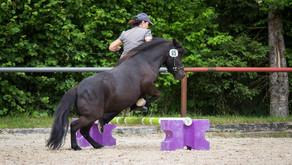 Aktualisierte Startliste für SFRV HorseChallenge®  NPZ Bern/BE
