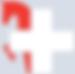 SFRV rot-grau oSchrift 478x473 HQ.png