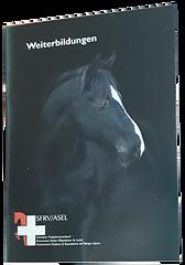 Weiterbildungsbüchlein_2019_Cover.png