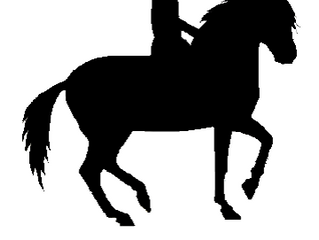 Parcourspläne SFRV HorseChallenge Düdingen 23.6.2019