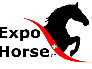 Der SFRV an der ExpoHorse 2019