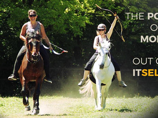 Kurse 2018: Klassisch Barocke Dressur bis Natural Horseback Archery