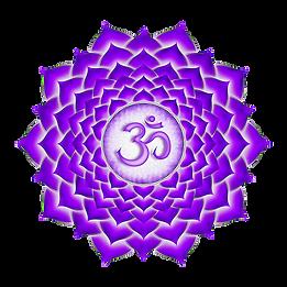 kisspng-sahasrara-chakra-svadhishthana-v