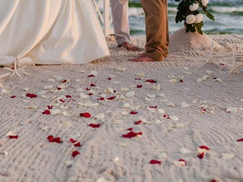 Rose Petal Walkway