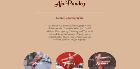 Personal Performer Website, Aja Pandey