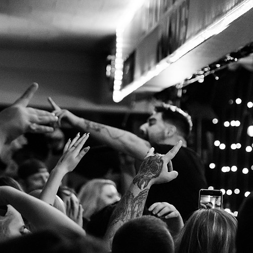 Palisades @Big Room Bar