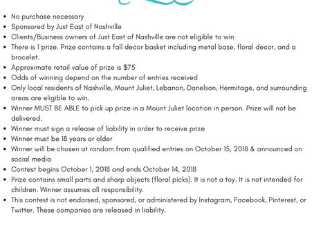 Official Terms & Conditions for Fall 2018 Giveaway!