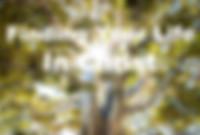 jeremy-bishop-556948-unsplash1_edited.jp