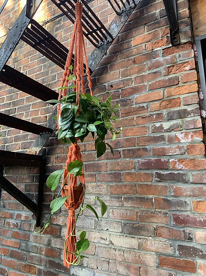 Two Tier Orange Plant Hanger