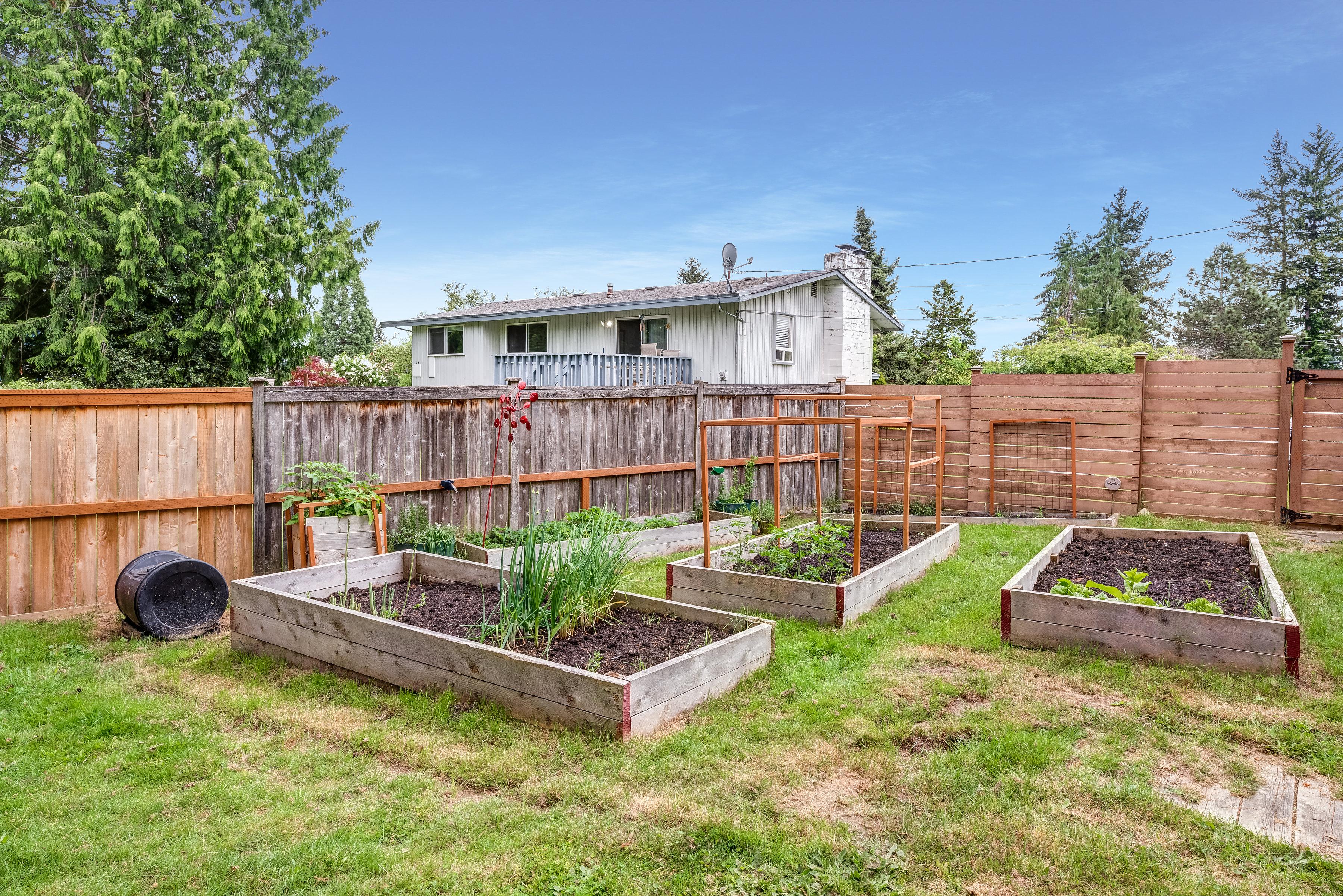 veggetable gardens