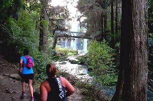 Trail Run Northland Parihaka Half Marath