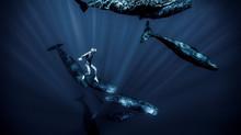 VIDEO / « UN HYMNE AUX OCEANS »